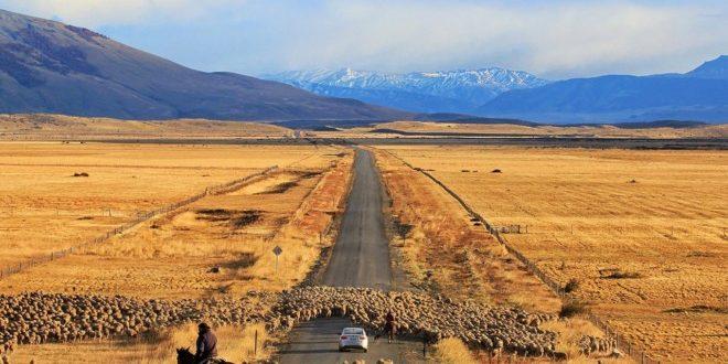 La bataille des champs patagoniques(3)