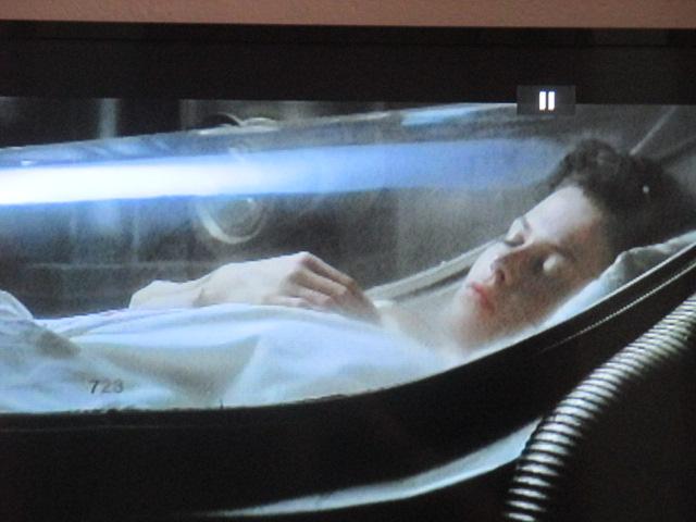 Beau symbolisme final. Blanche-neige dans son cercueil… Retour sur terre, vraiment ? le chat est là, dormeur et veilleur. On laisse conclure Baudelaire. Félins, Egypte, science etmagie…