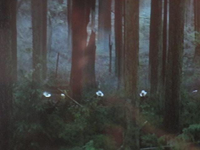 René dans les bras de Nature (Hulè, en grec) et de la forêt-mère, John va pouvoir combattre et traquer l'ennemi polymorphe ; le pépère moderne au lumbago actif etdéfaillant.