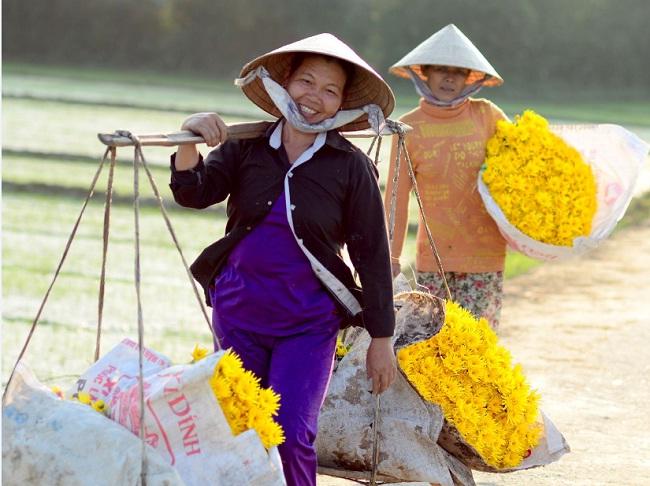 Hommage au Vietnam (II) : Chaliand célèbre les Viets et remet les bobos parisiens à leurplace