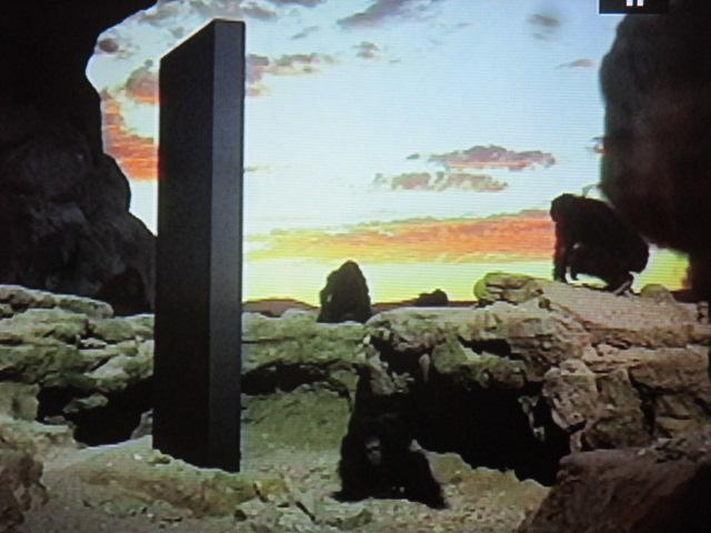 Le monolithe enseigne, les singes feront la ronde. Figure du cercle consacrée dans le film. Pierre de foudre biblique, écran de vérité qui contraste avec nos écrans de fausseté de lamodernité.